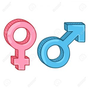 119460437 vector cartoon gender symbols blue male and pink female signs 300x300 - FTM Meaning - What Does FTM Mean?