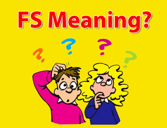 FS Meaning - FS Meaning - What Does FS Mean?