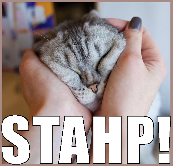 STAHP Meaning What Does STAHP Mean - STAHP Meaning - What Does STAHP Mean?